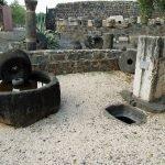 Roman Olive Press